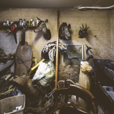 Ayer photographe aubigny vendee parents enfance souvenir vue de l'atelier bazar